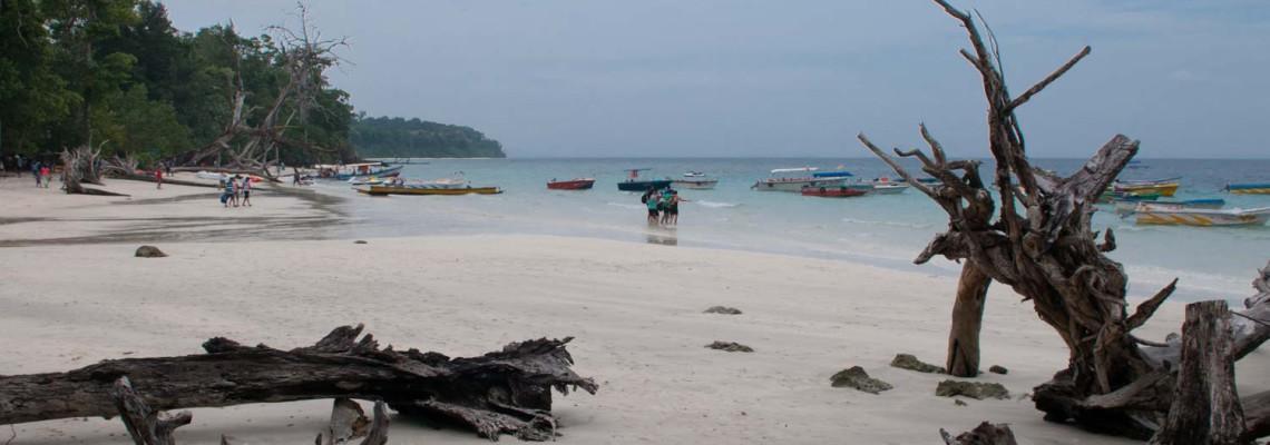 Plage Eléphant, Ile Havelock, Iles Andaman, Inde
